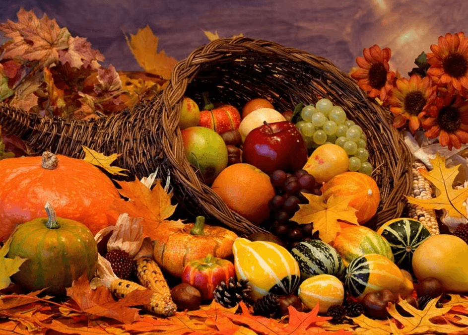 Nutrition : Les 7 aliments « forme » de l'automne